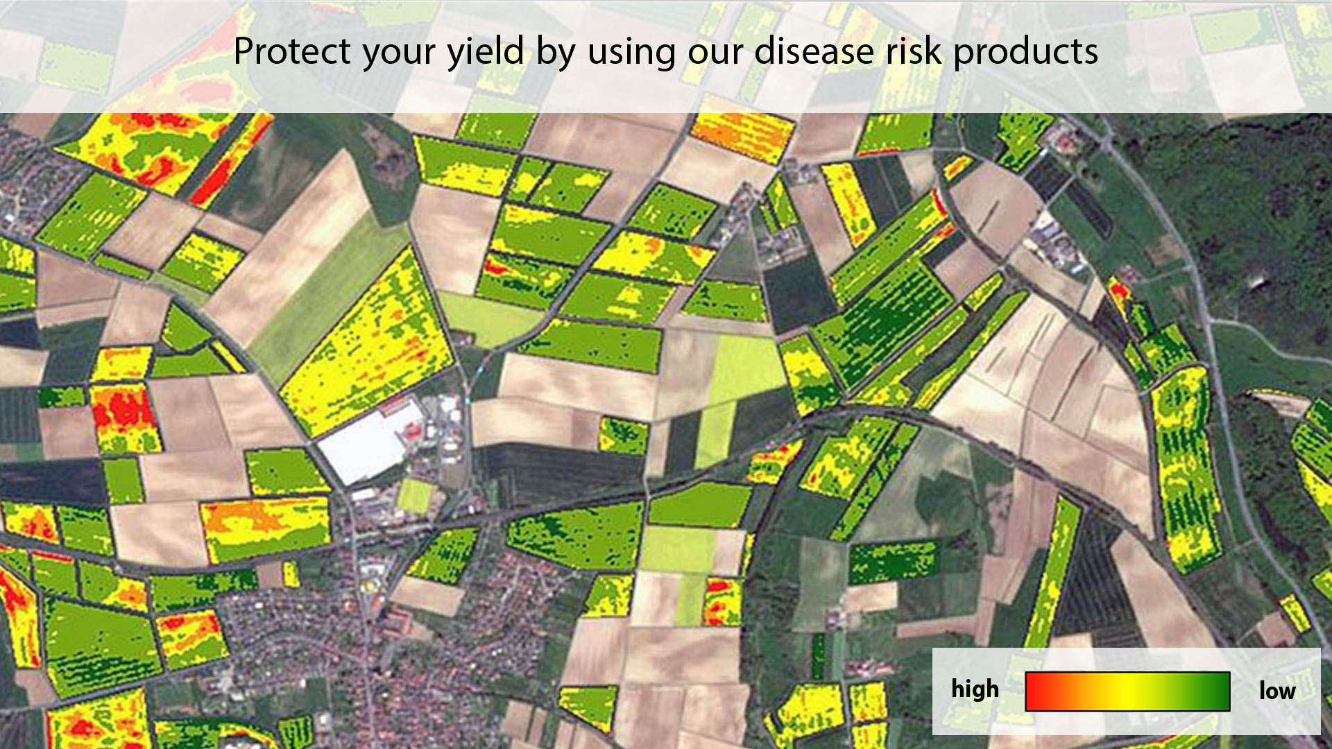 Protect your yield by using our disease risk products