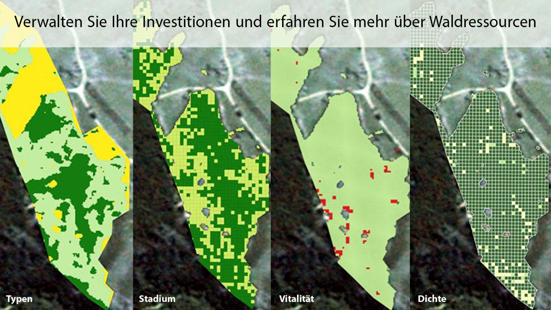 Verwalten Sie Ihre Investitionen und erfahren Sie mehr über Waldressourcen